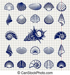 Sketch of sea shells vector illustration. Sea shell...