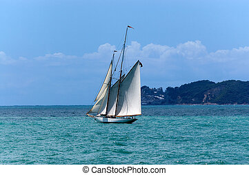 Sailing Ship - Gulf of La Spezia Italy - Sailing ship with...