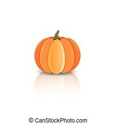 Pumpkin reflected