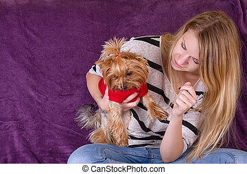 Cheerful beautiful young girl having fun with dog Yorkshire...