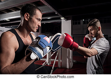 Side view of young boxer training hook on pad - Totally...