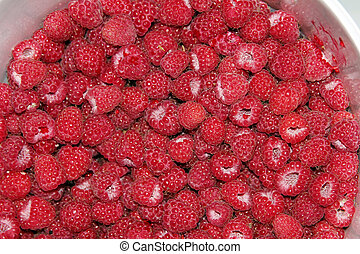 freshly picked raspberries background