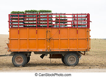 Tractor trailer loaded with seedlings. Crates seedlings
