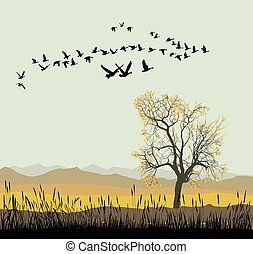 Autumn migration of wild geese - Vector illustration of...
