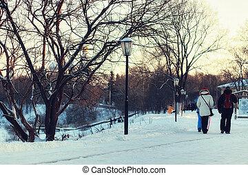 Winter street light tree - urban landscape on a sunny winter...
