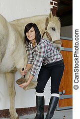 woman cleans the horse's hooves - beautiful brunette young...