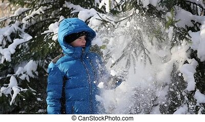 teen throws off snow from tree branches in a sunny day - the...