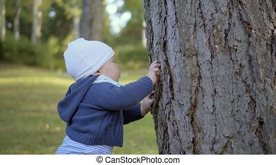 Child stands near a tree and touch it. Tears bark. Outdoor.