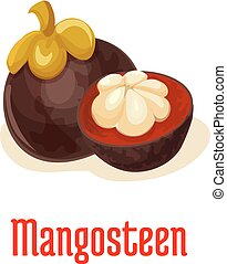 Mangosteen exotic tropical fruit icon - Mangosteen. Vector...