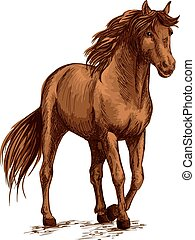 Brown horse pacing calm in wild