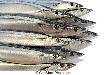 pez, varios, marina