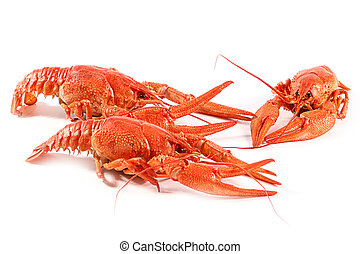fresh boiled crawfish - large fresh boiled crawfish...