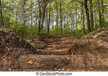 Stairs dug earth in forest - Stairs dug earth to climb from...