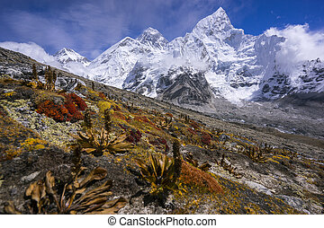 Everest from the way to Kala Pattar. Gorak Shep. with dry...