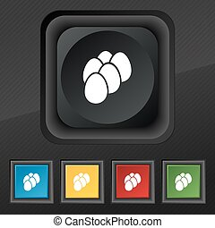 eggs icon symbol. Set of five colorful, stylish buttons on black texture for your design. Vector