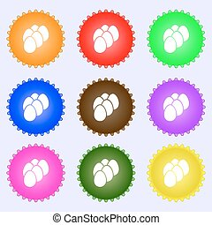 eggs icon sign. Big set of colorful, diverse, high-quality...