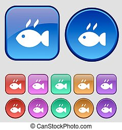 Fish dish Icon sign. A set of twelve vintage buttons for your design. Vector