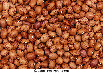 Pinto Beans - Closeup image of ecological pinto beans seen...
