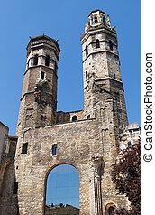 Saint-Vincent cathedral in Macon - Vieux Saint-Vincent...