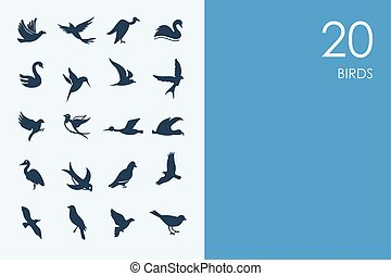 Set of BLUE HAMSTER Library birds icons - BLUE HAMSTER...
