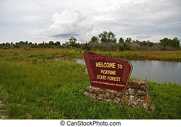 Picayune Strand State Forest, an Everglades preserve