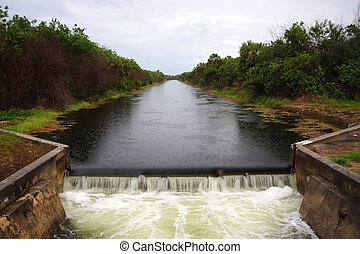 Old Dam in the Everglades, Picayune Strand State Forest