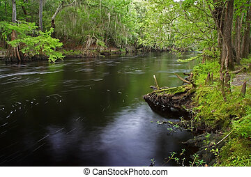 Santa Fe River - The scenic Santa Fe River in Florida
