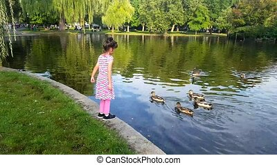 Girl feeding ducks in the park. Girl play outdoors. Kid playing with pets