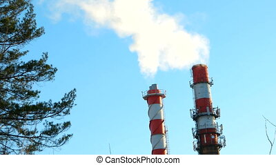 Boiler house chimney. Steam against the clear blue sky....