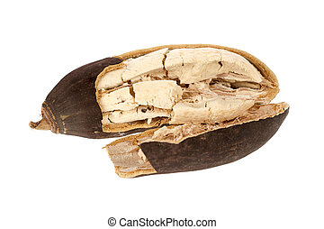 Baobab fruit on a white background