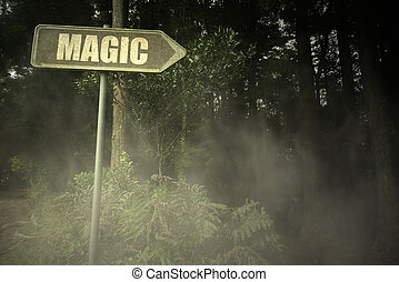 old signboard with text magic near the sinister forest -...