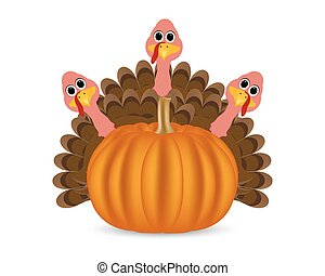 Turkeys cartoon with pumpkins on the feast day of...