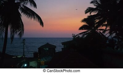 Beautiful Tropical Sunset by Indian Ocean in a village...