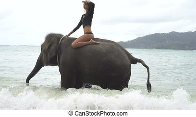 Young pretty blond  woman on elephant in the sea