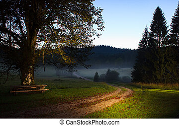 Sunrise with fog in the slovenian countryside