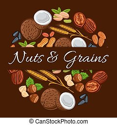 Nuts and grains in round shape emblem. Nutritious coconut,...