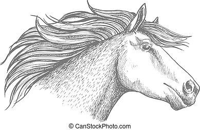 Horse head sketch sport emblem