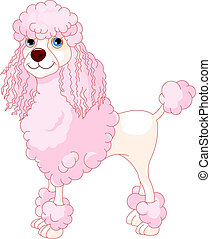 Pink Poodle - Adorable illustration of cute Pink Poodle