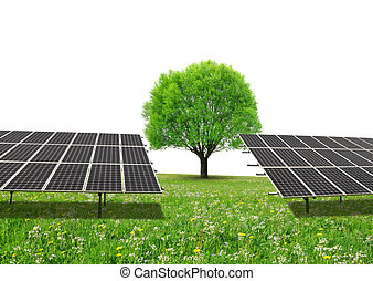 Solar energy panels and tree on meadow with copy space.