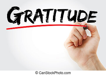 gratitud, marcador, mano, escritura
