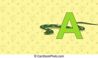 Anaconda. English ZOO Alphabet - letter A - Animated English...