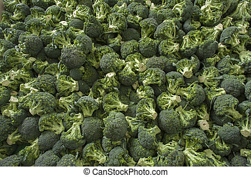 Very large group of fresh green broccoli