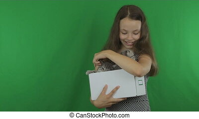 Beautiful girl communicates with kittens Scottish Fold on...