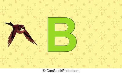 Brambling. English ZOO Alphabet - letter B - Animated...