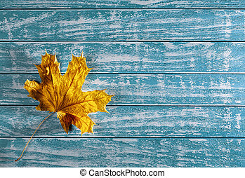 yellow maple leaf on a background of old wood