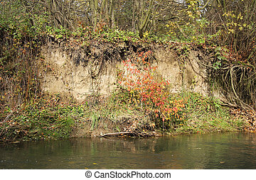 undermined bank of river - undermined bank of a river with...
