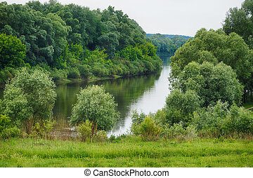 Lake In The Forest Landscape