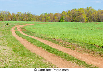 Road COUNTRY in spring day. Country road to the forest in...