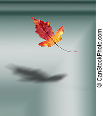 Autumn Leaves. Maple, a tree or shrub with lobed leaves,...