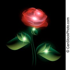 red fairy flower - black background and red-colored fantasy...